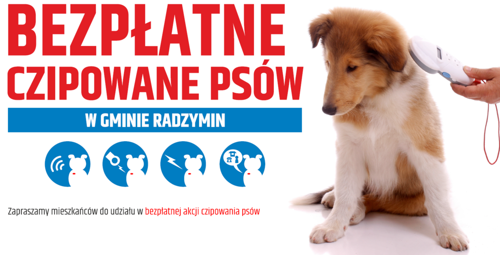 Czipowanie psów 2021_cover_ok.png